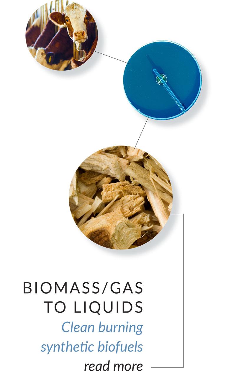 BIOMASS/GAS TO LIQUIDS